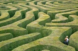 Let us guide you through the lettings maze.